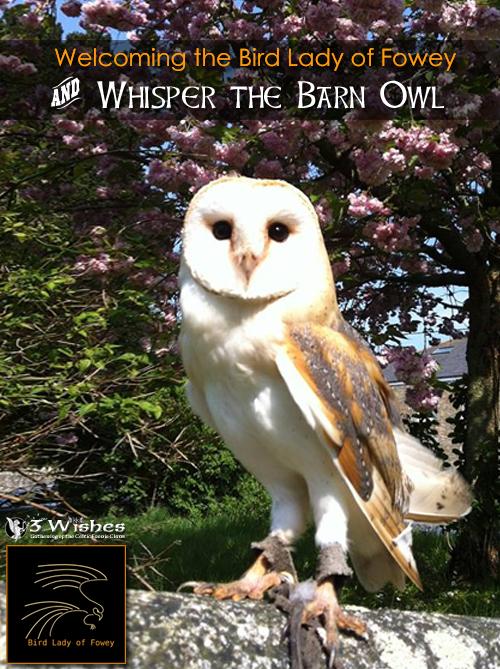 3WFF_2016_banner-slider-Whispher-barn-owl